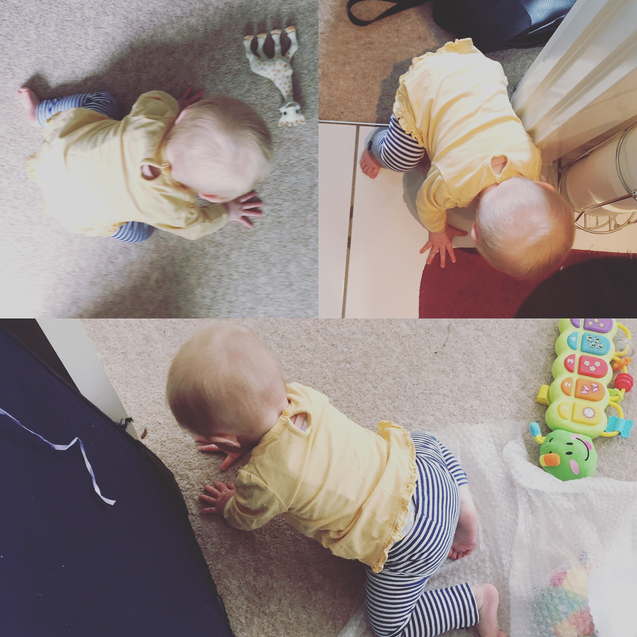 crawling-baby-9-months